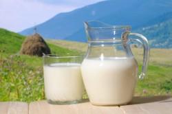 Interprofession du lait